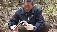 아이언맨에 토니 스타크가 있다면<BR>한국에는 자연인 홍학기가 있다!